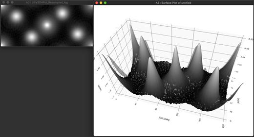 左側の画像は、LiFe3O4 の単位格子内の 3D 静電ポテンシャルの対数をあらわす 3D ImageVolume の最初の画像です。右側は同じ内容のサーフェスプロットです